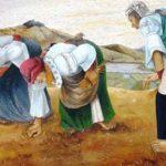 Mujer rural  y su  papel en sociedad